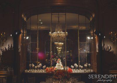 Houston_Wedding_Serendipity_Photography_22